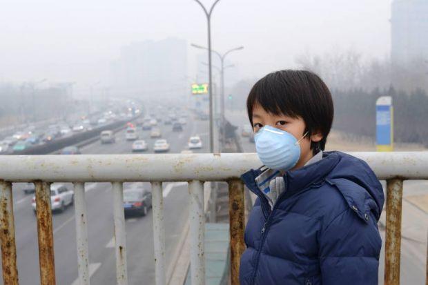 ONU registra 12,6 milhões de mortes/ano por degradação ambiental