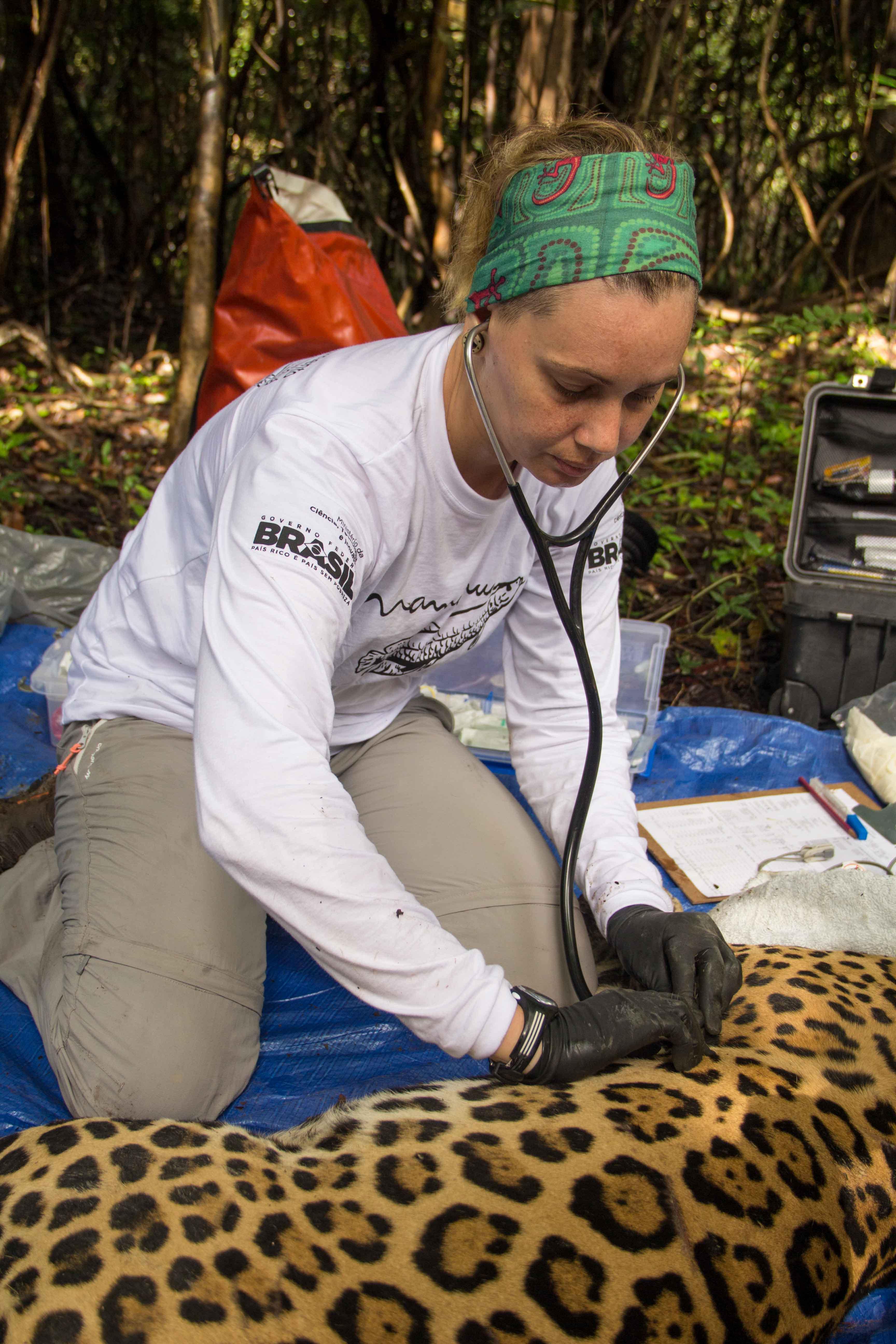 Monitoramento-onças-foto-Amanda-Lelis-ciclovivo3