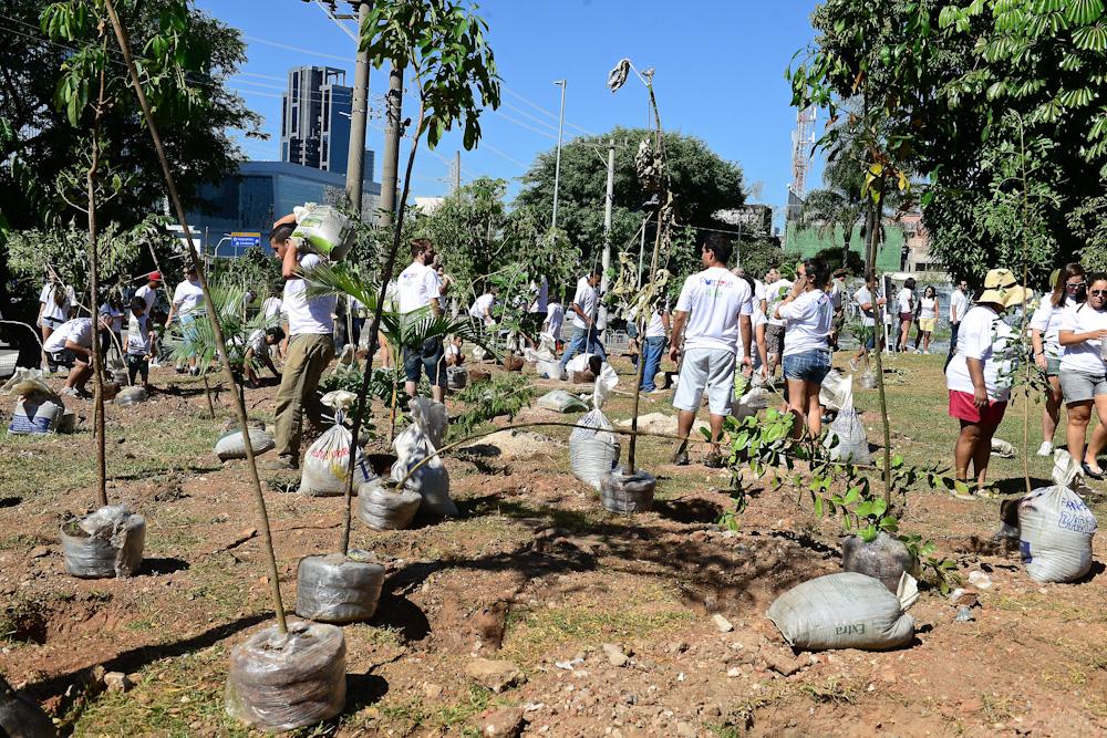 Voluntários da TCS. | Foto: Divulgação
