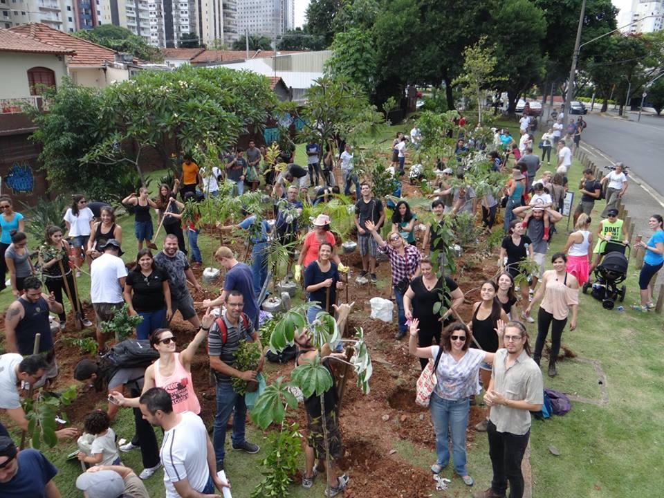 São Paulo tem curso gratuito sobre arborização urbana
