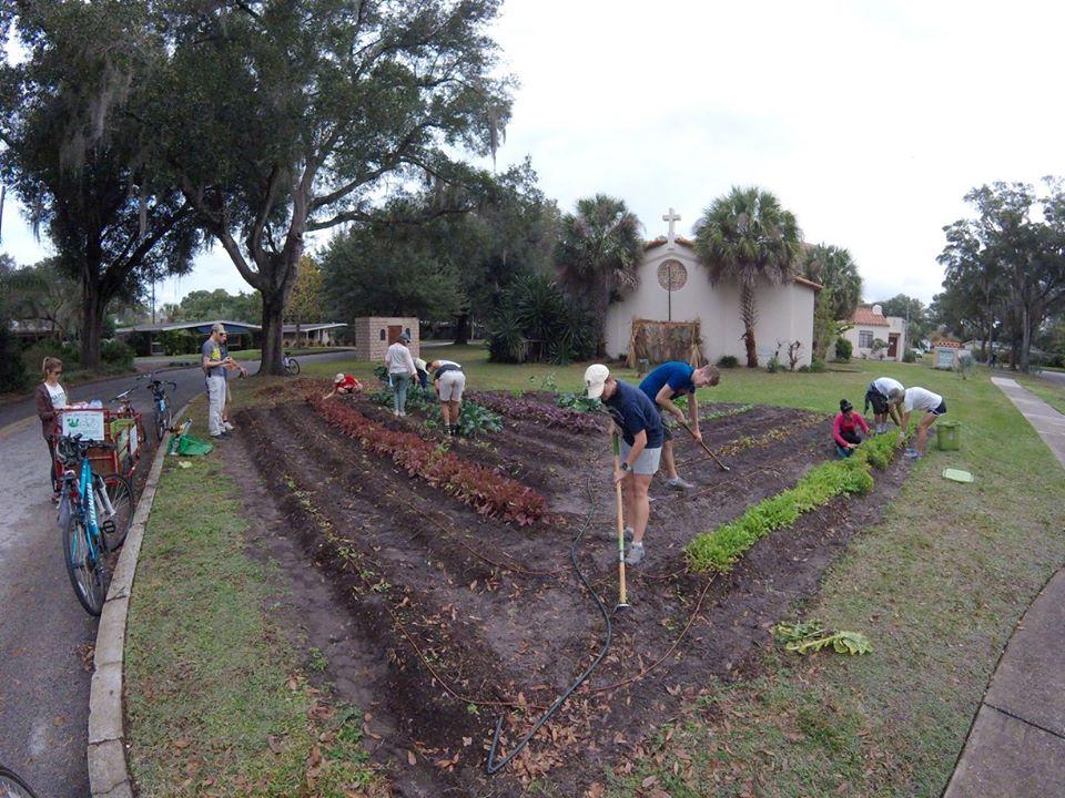 Projeto transforma jardins em mini-fazendas orgânicas na Flórida