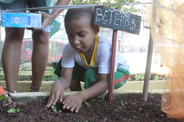 Horta educativa muda hábitos de crianças em escolas municipais de SP