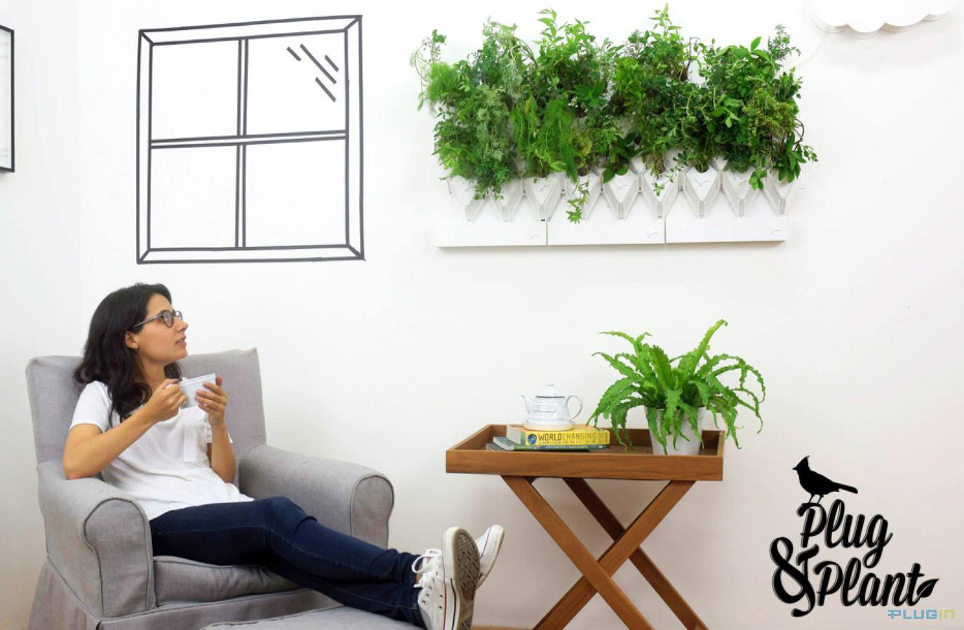 Sistema modular transforma qualquer parede em horta inteligente