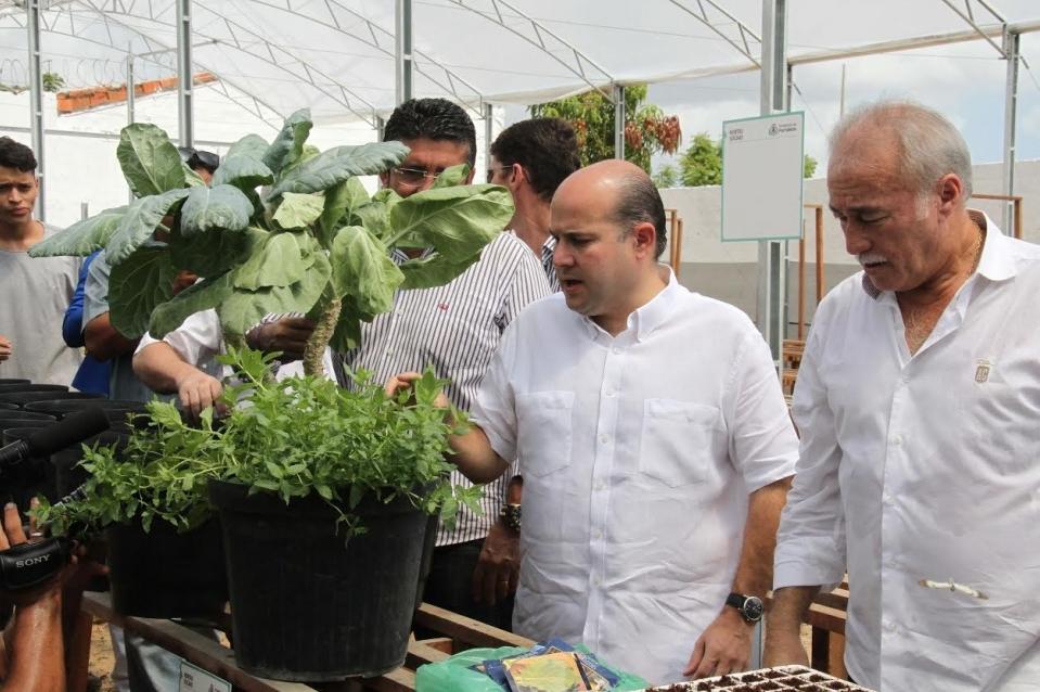 Hortas Sociais de Fortaleza devem produzir 21 ton de alimentos orgânicos