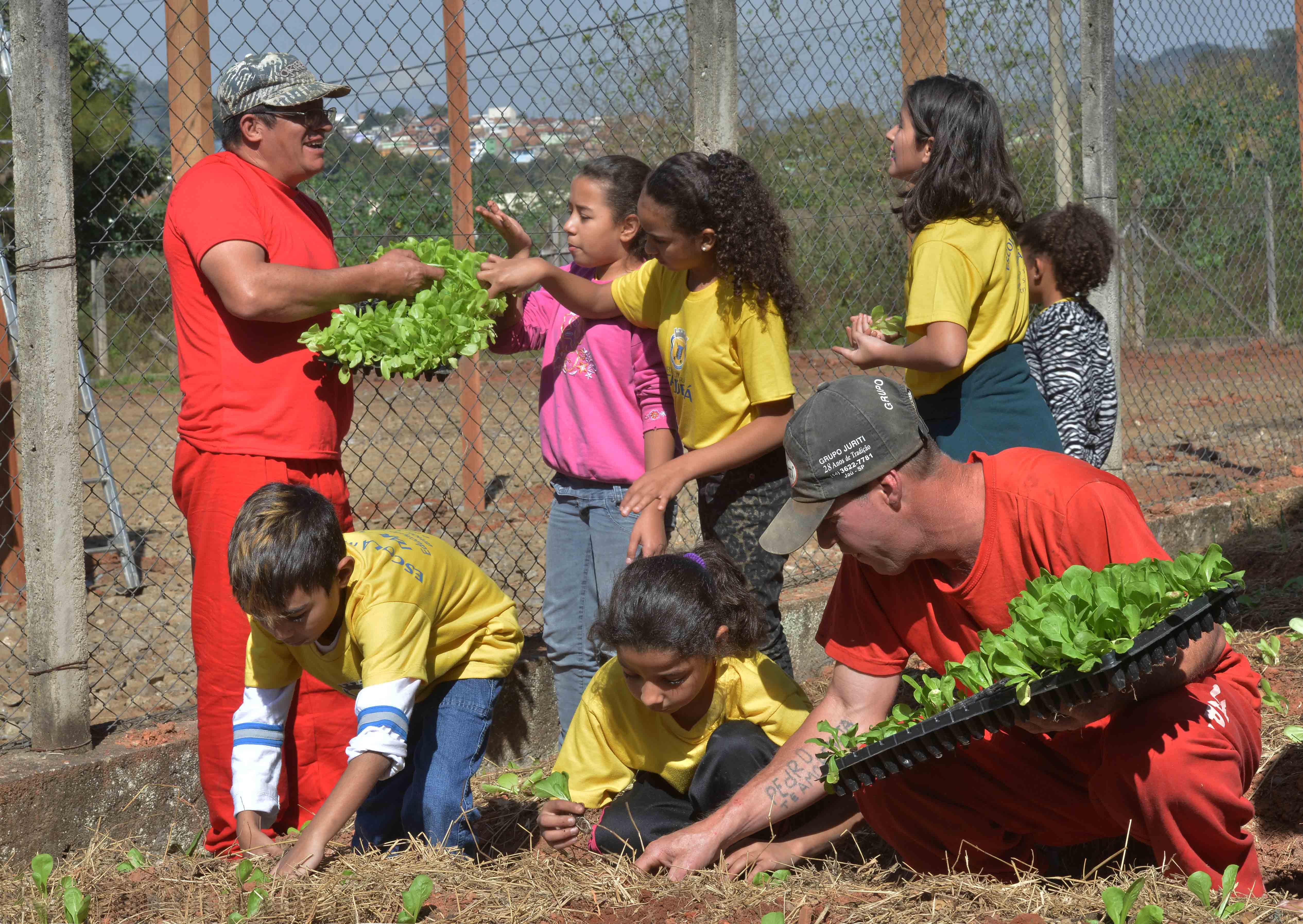 Detentos transformam áreas abandonadas em hortas orgânicas em MG