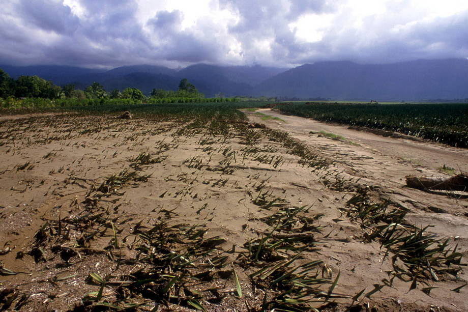 Mudanças climáticas ameaçam segurança alimentar na América Latina