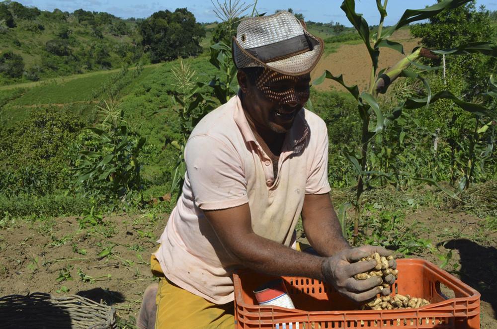 São Paulo recebe prêmio global por projeto de incentivo à agricultura familiar