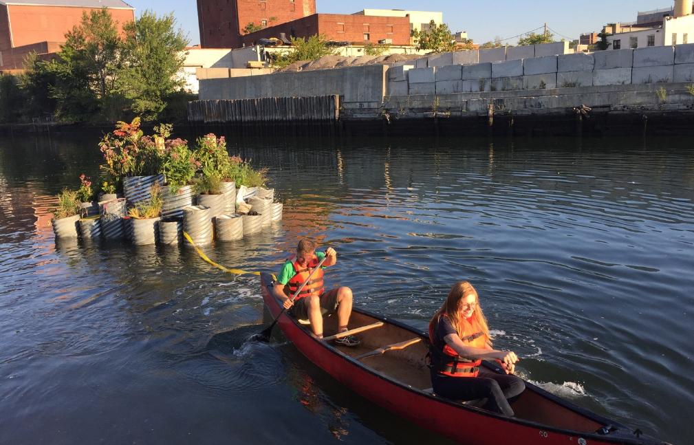 Jardins flutuantes ajudam a produzir plantas e despoluir canal em NY