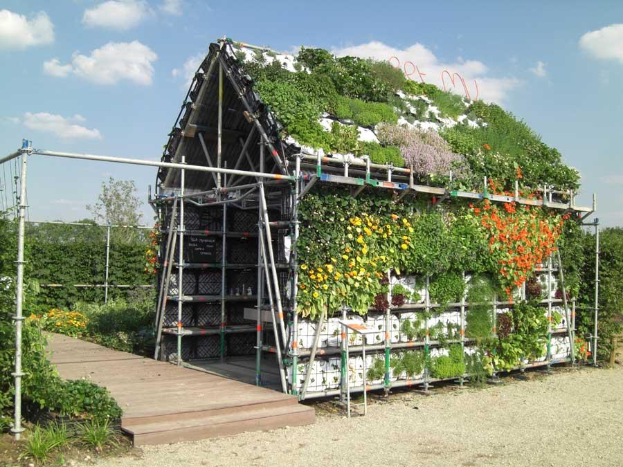 Holandeses criam casa totalmente comestível