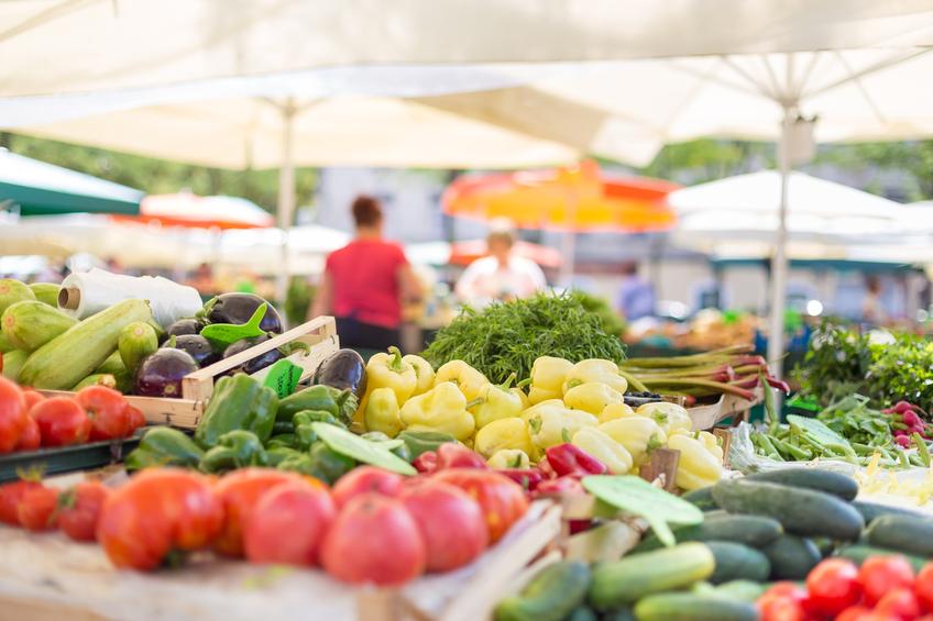 Aplicativo gratuito para celular mostra onde encontrar feira orgânica mais próxima