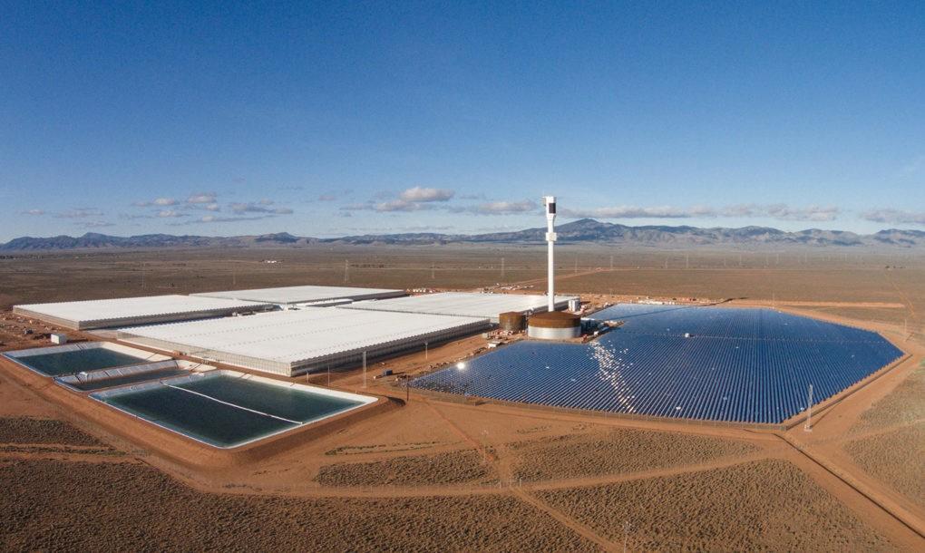 Estufa tecnológica no deserto produz 17t de tomate orgânico/ano
