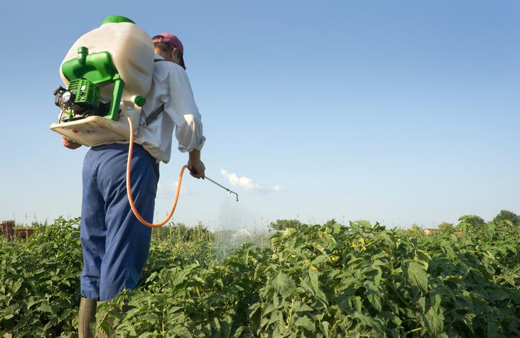 Câmara de SP aprova lei que proíbe glifosato e outros elementos em agrotóxicos