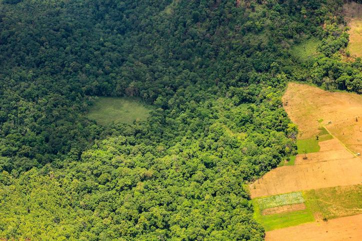 Desmatamento na Amazônia cresceu 29% em 2016