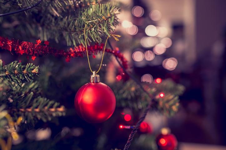 12 dicas para tornar as festas de fim de ano mais sustentáveis