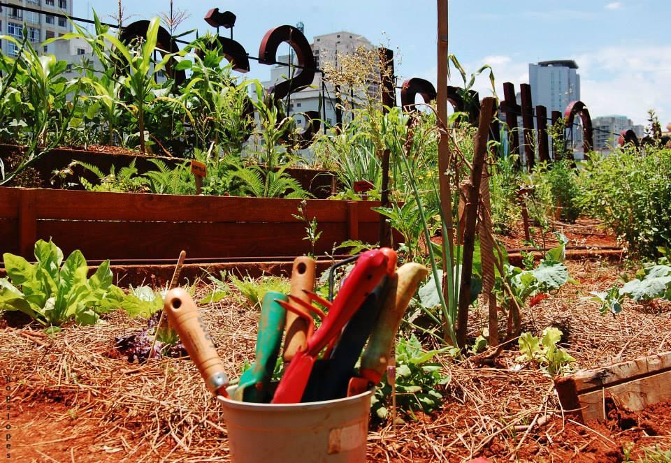 SP tem 3a edição do Festival de Agricultura Urbana