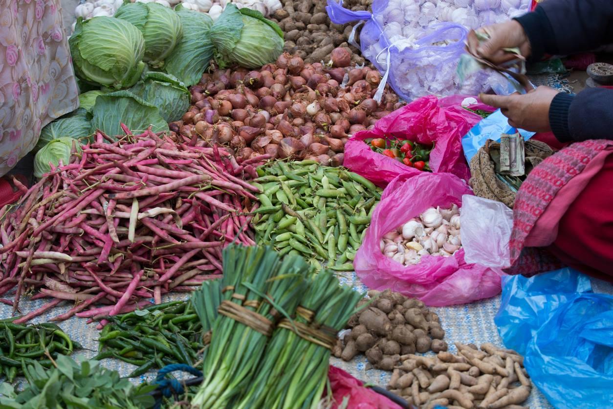 Capital da Índia, Nova Déli, proíbe uso de plástico descartável