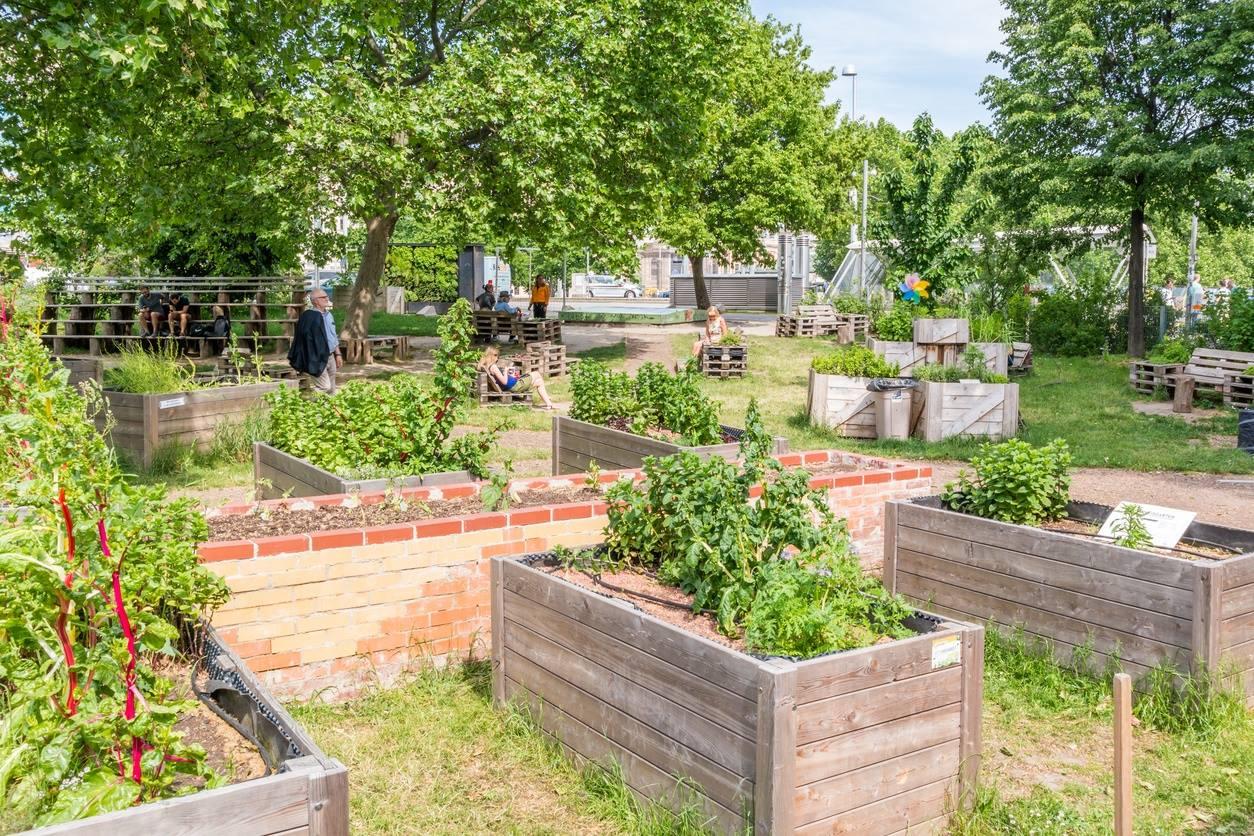 7 benefícios da agricultura urbana para a sociedade atual