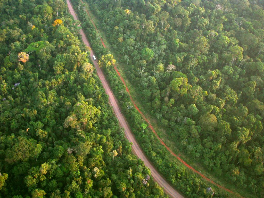 WWF alerta: reduzir áreas protegidas no sul do Amazonas aumentará o desmatamento