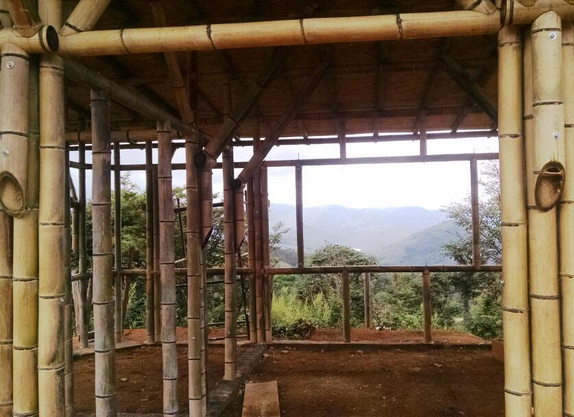 bambu_bioconstrucao