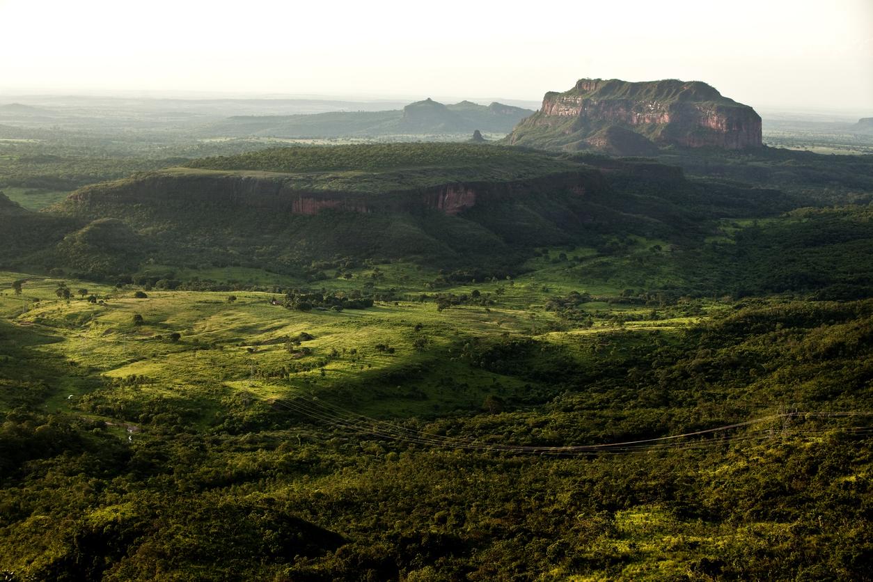 Fundação Grupo Boticário abre edital de apoio a projetos de conservação da natureza