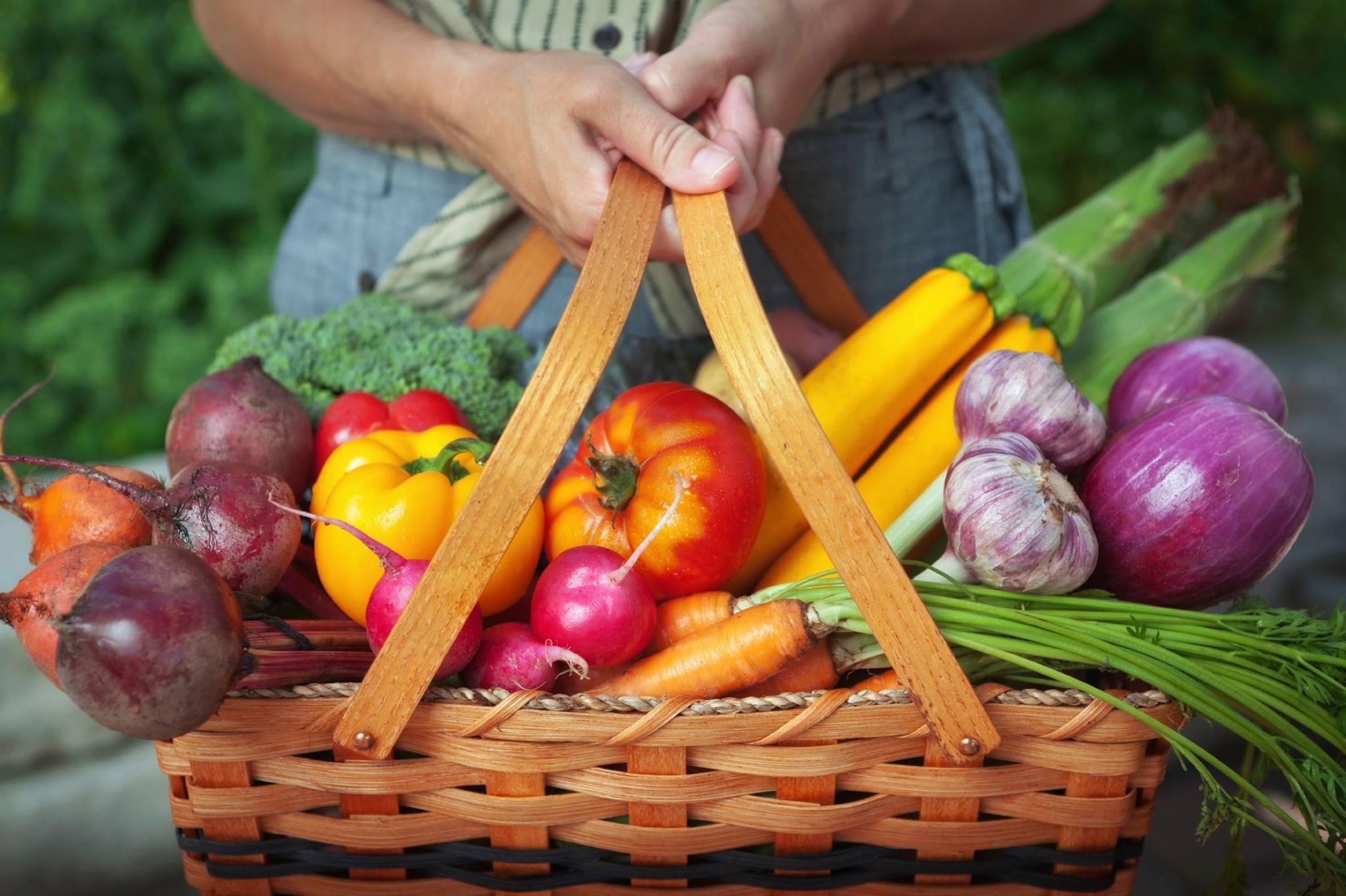 Empresário cria crowdfounding para vender orgânicos a preços justos