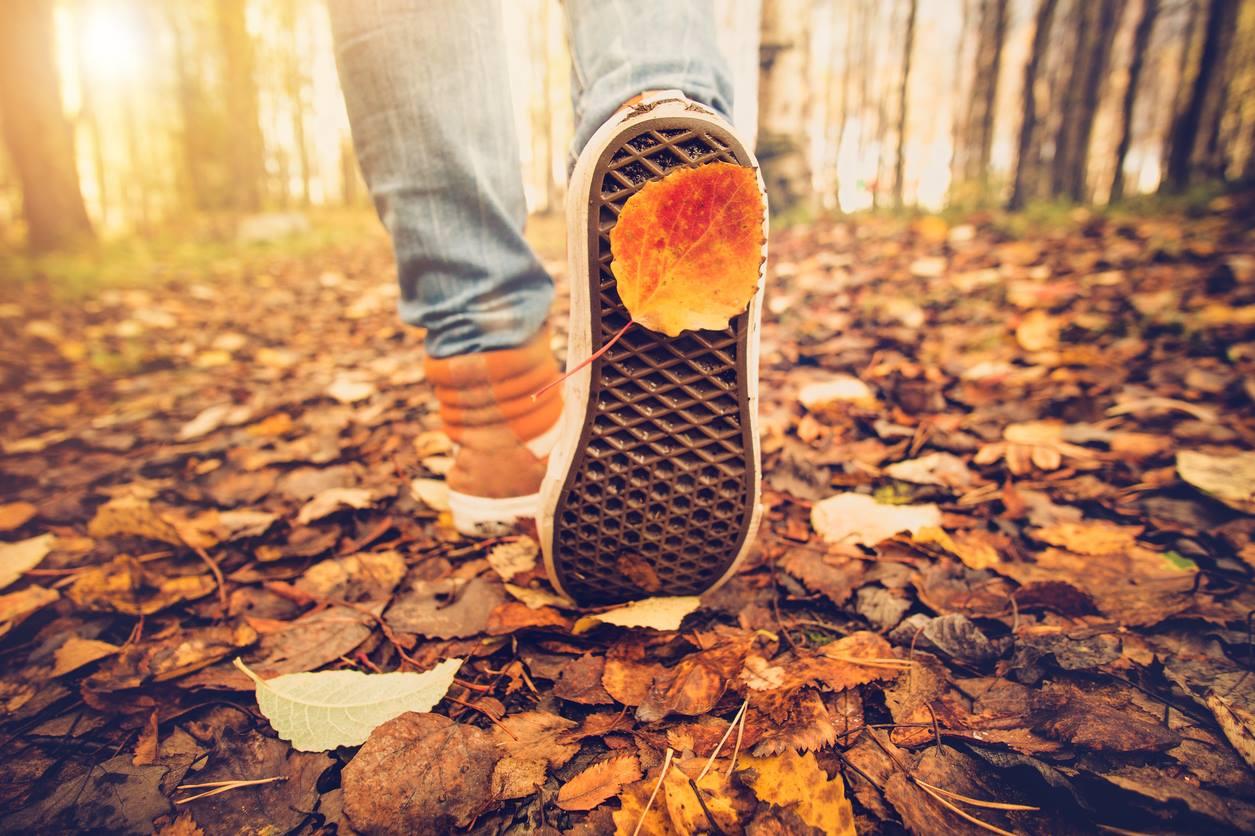 Eventos no Parque do Ibirapuera darão boas-vindas ao outono