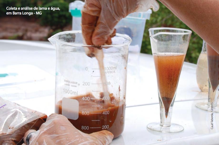 Relatório da SOS Mata Atlântica avalia a qualidade da água na bacia do Rio Doce