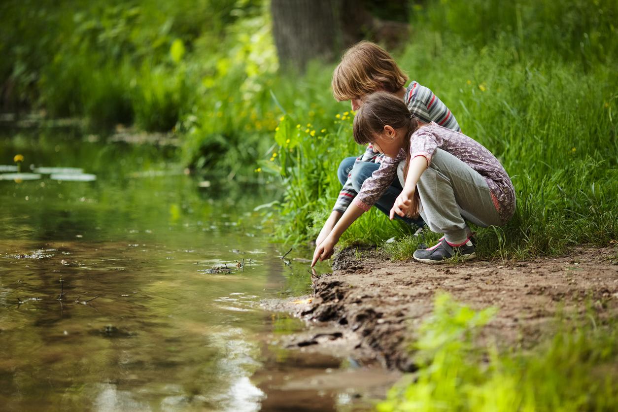 Curso em SP promove a interação de crianças com a natureza