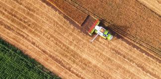 desmatamento soja