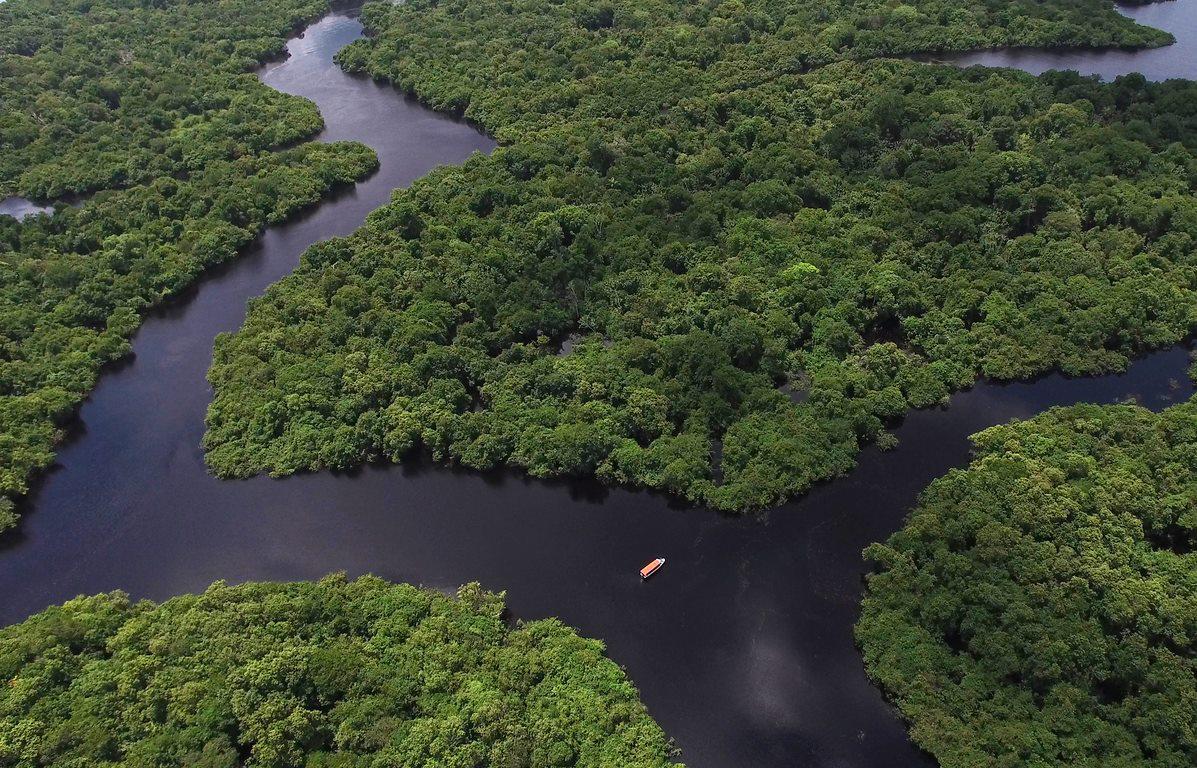 Manobra no Congresso reduz florestas protegidas na Amazônia