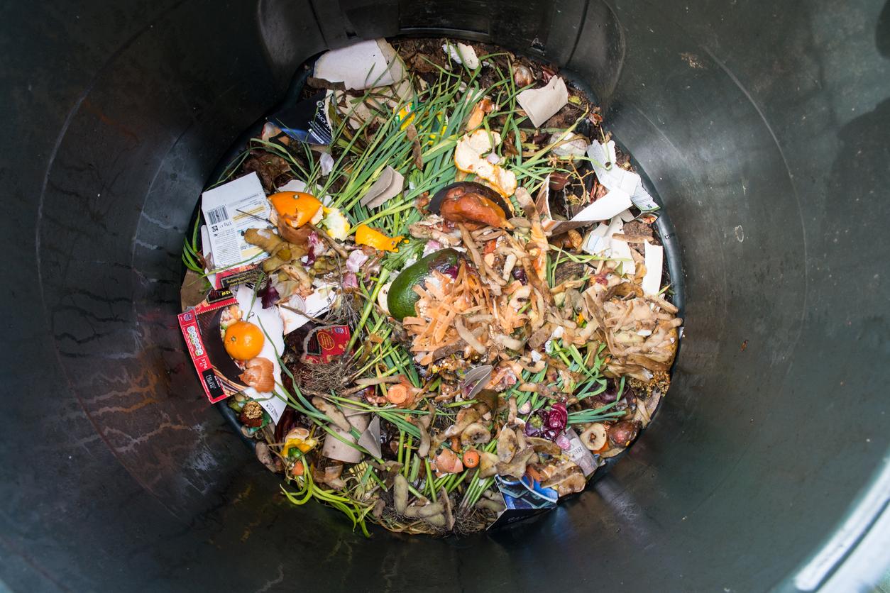 Cidade de São Paulo desperdiça 465 milhões com resíduos orgânicos