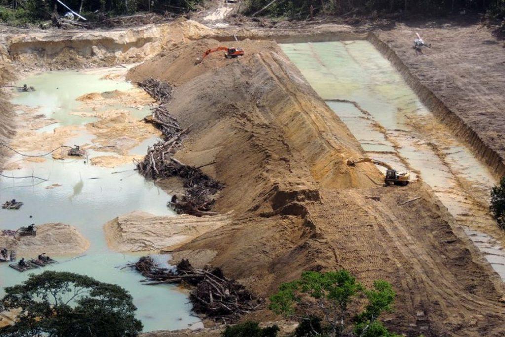 Senado aprova MP que reduz floresta nacional no Pará para passagem de ferrovia