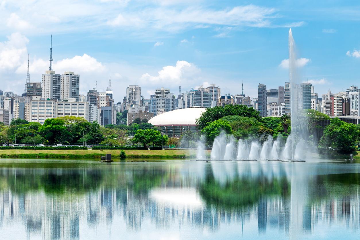 Lagos do Ibirapuera serão despoluídos com plantas filtrantes nativas