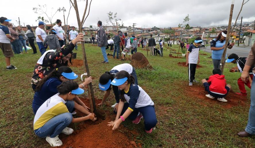 Mogi das Cruzes (SP) vai realizar o plantio de 50 mil árvores