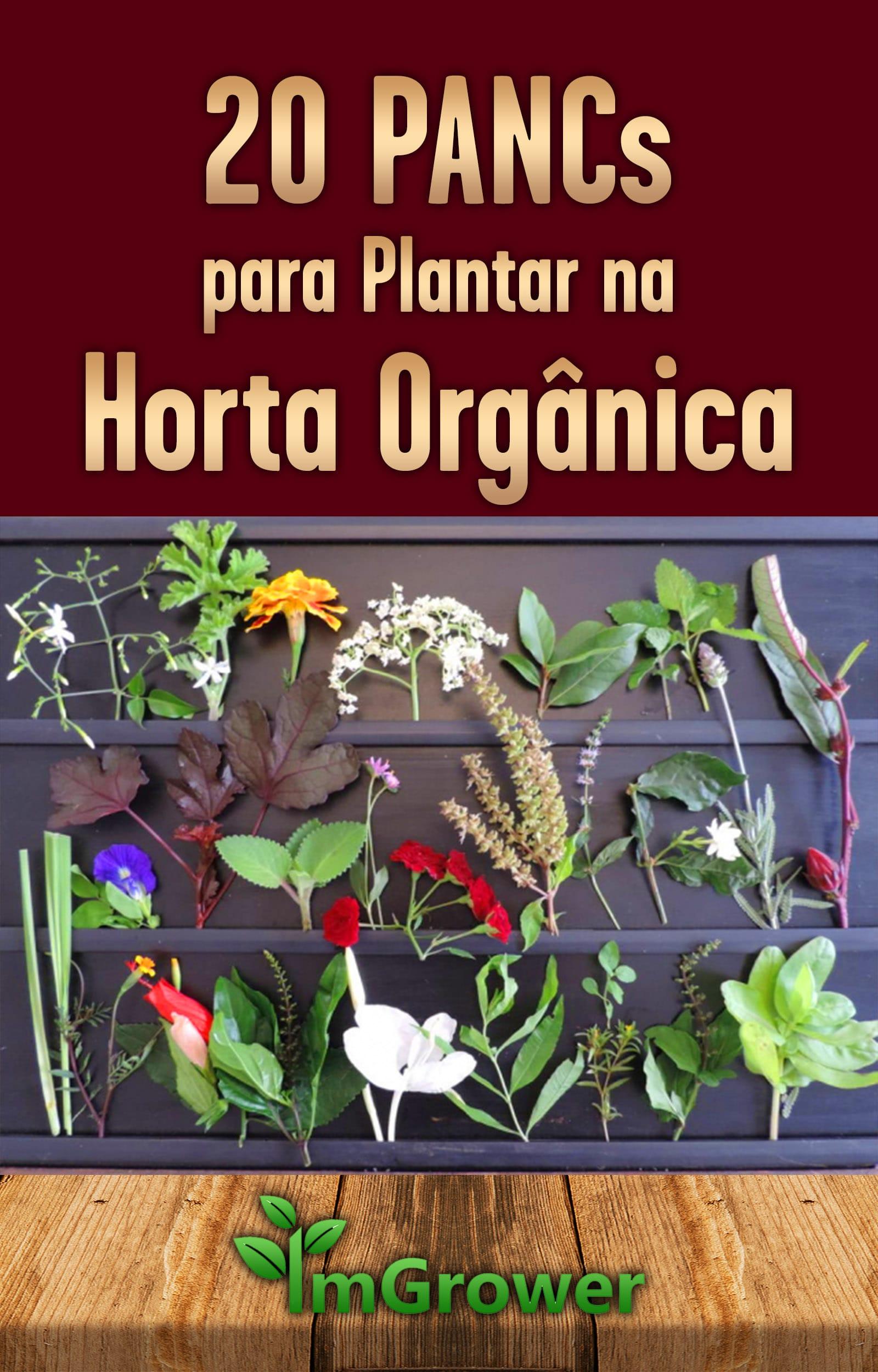 e-book-20-pancs-para-plantar-na-horta-organica-imgrower-1