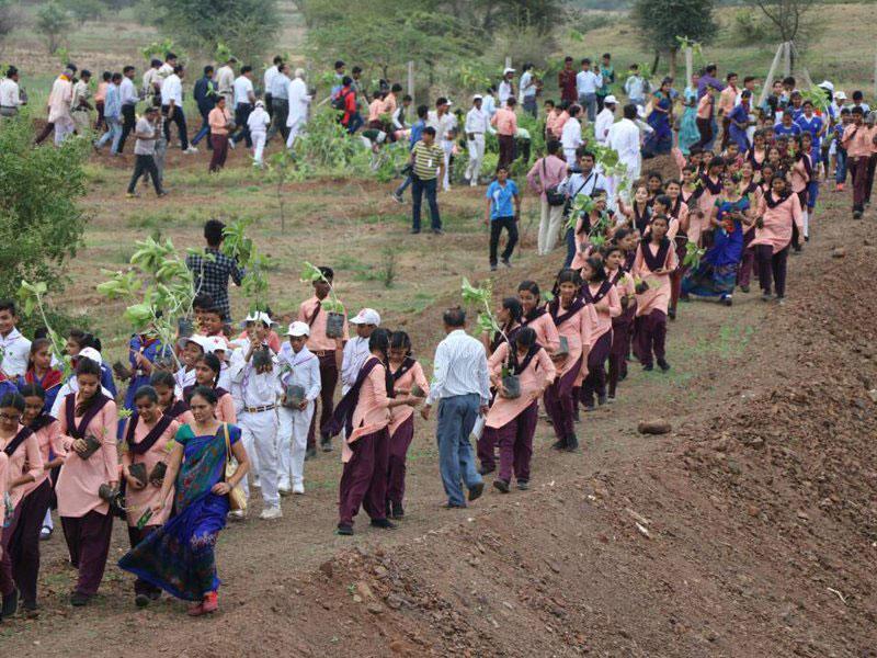 Índia planta 66 milhões de árvores em 12 horas