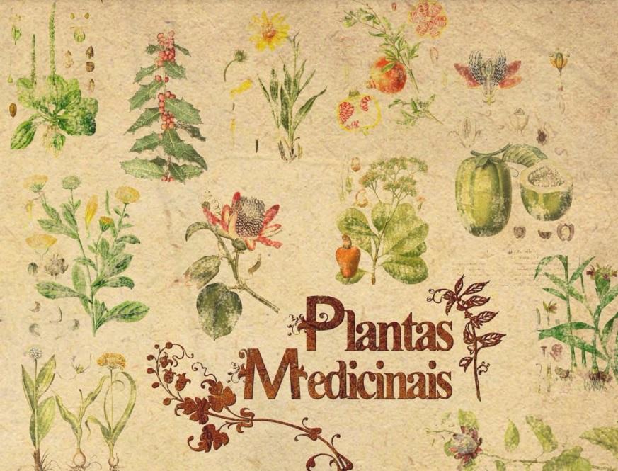 plantasmedicinais-ebook-ciclovivo