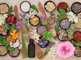 ervas medicinais