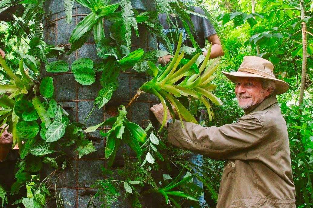 Especialista em bioconstrução, arquiteto alemão realizará oficina sobre hortas verticais em SP