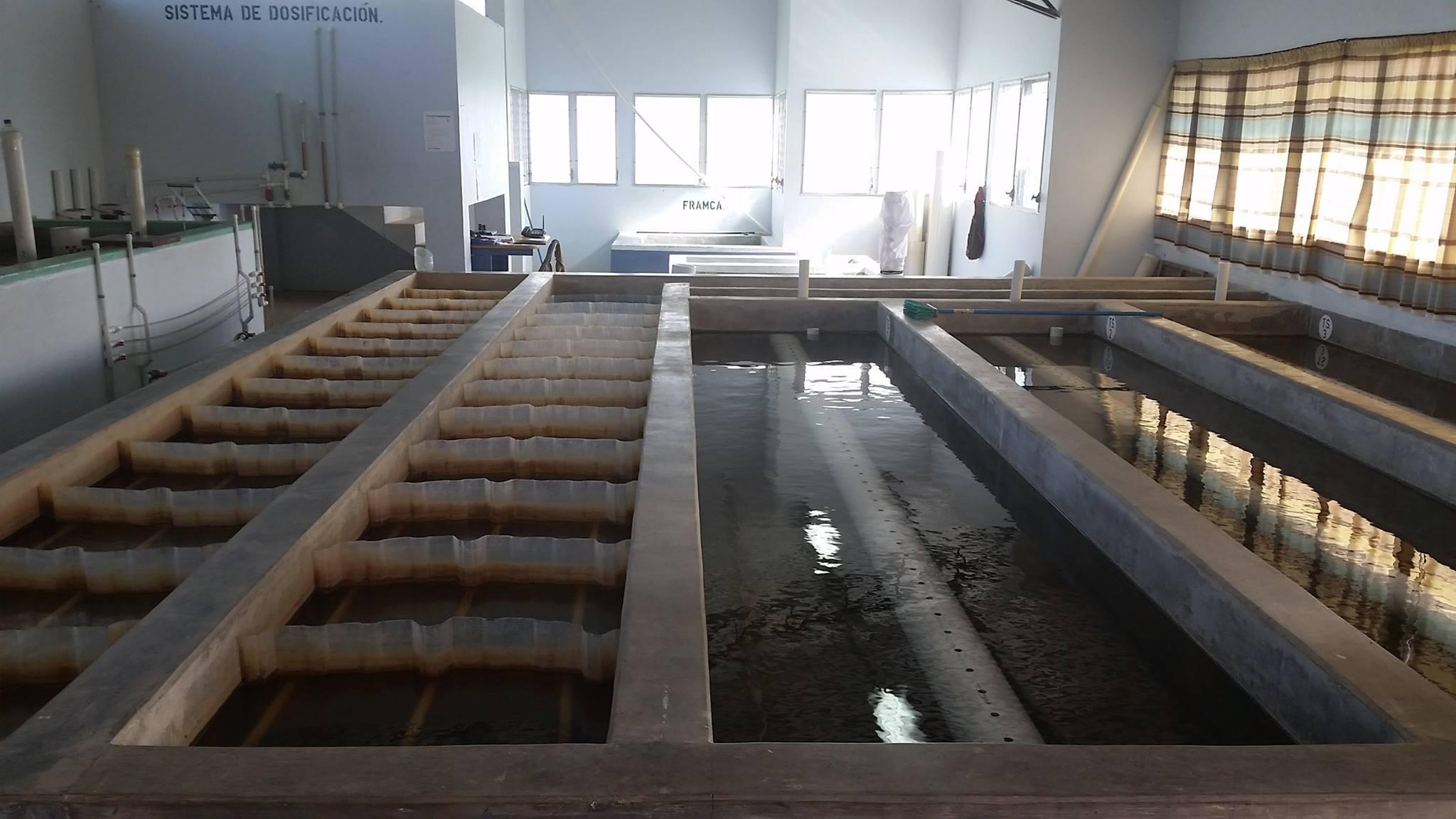 Tecnologia que trata água sem usar energia muda a vida de moradores em Honduras