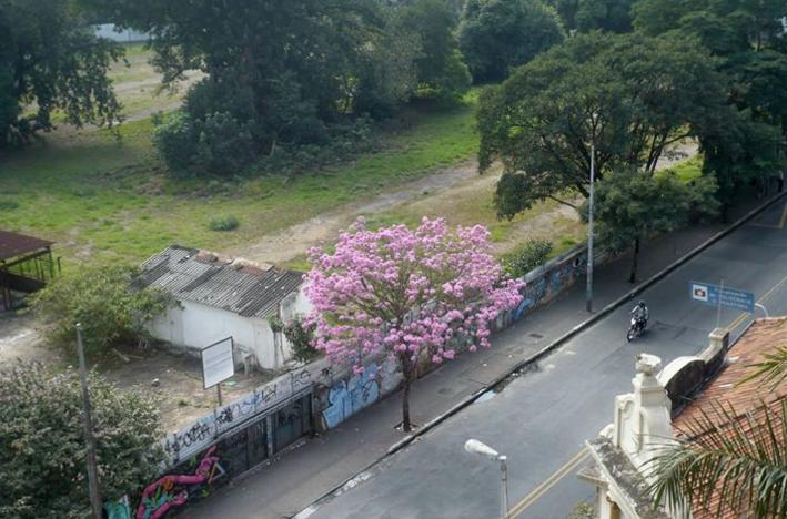 Foto: Parque Augusta/Divulgação