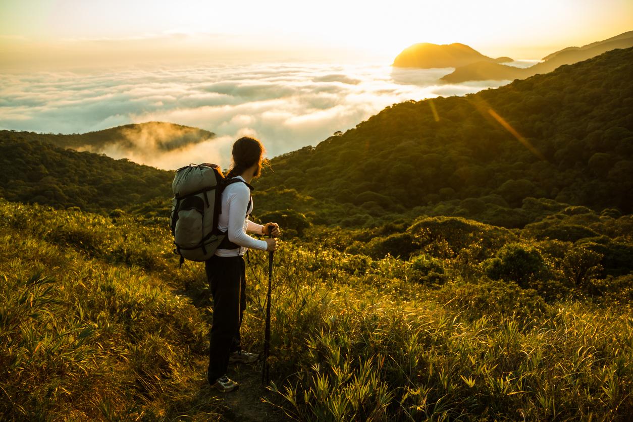 Empresa busca brasileiros para viajar pelo país colhendo histórias