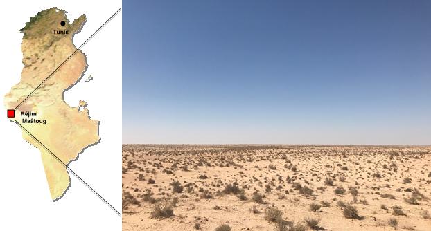 energiasolar-ciclo-tunisia