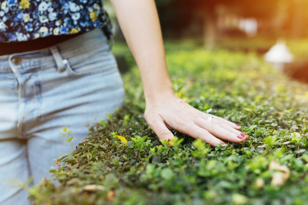 natureza bem-estar