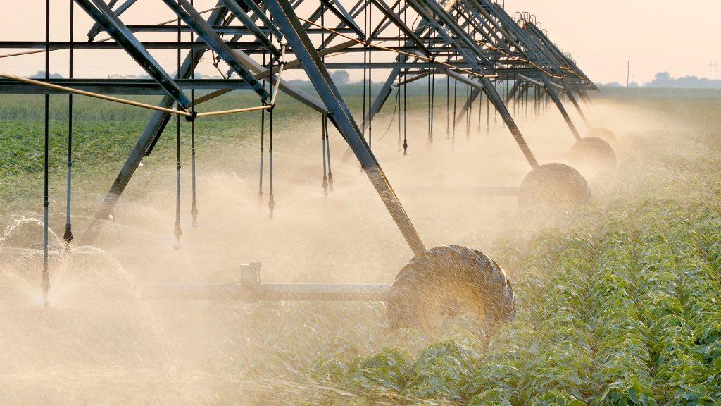 Campo de soja sendo irrigado