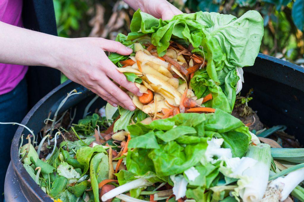 Vermont lixo orgânico