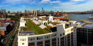 fazenda em topo de edifício histórico de Nova Iorque