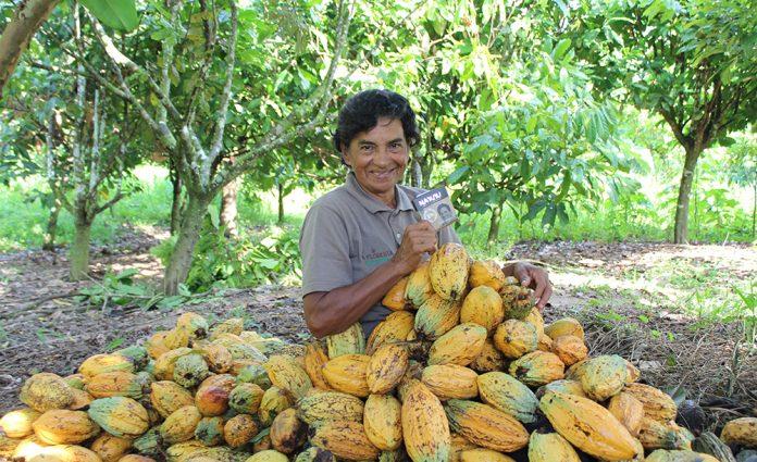 investimento em projetos positivos na Amazônia