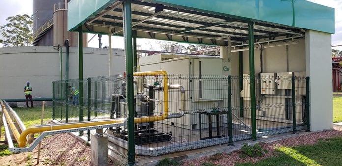 cervejaria biogás