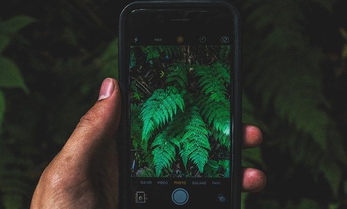 aplicativos jardinagem